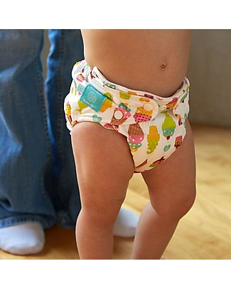 Charlie Banana Set of 3 Washable All in One Pocket Organic Diaper with 6 Hemp Inserts, Crush - One Size From 0 to 30 months -  Washable Nappies