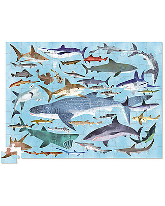 Crocodile Creek 100piece Puzzle in Canister with 36 Fascinating and Unique Sharks! Puzzles