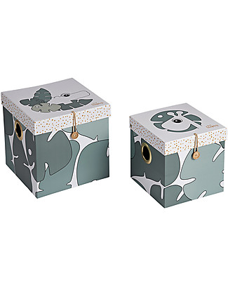 Done By Deer Box Set - 2 Pcs - Large - Tiny Tropics - Suitable from Birth Toy Storage Boxes