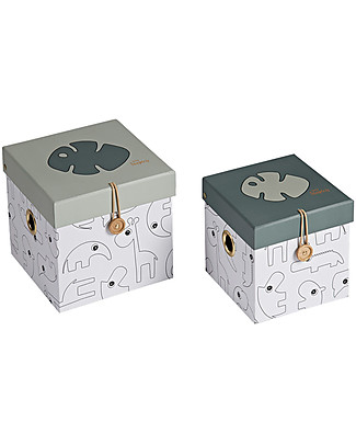 Done By Deer Box Set - 2 Pcs - Small - Tiny Tropics - Suitable from Birth Toy Storage Boxes