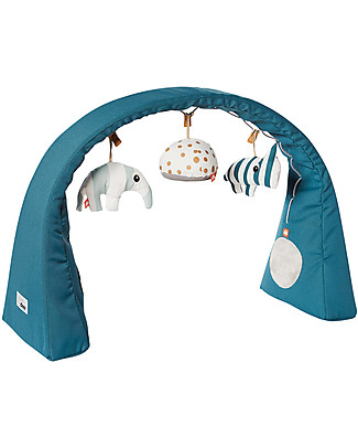 Done By Deer Flexible Activity Gym, Blue - Perfect on the go! Baby Gym
