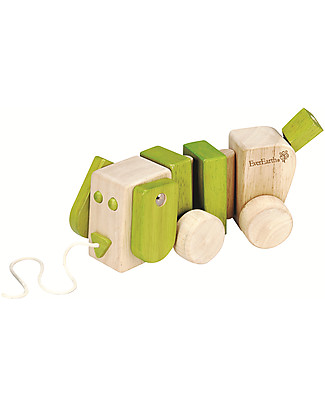EverEarth Pull-along Dog - Encourage Walking - FSC Certified Wood Wooden Push & Pull Toys