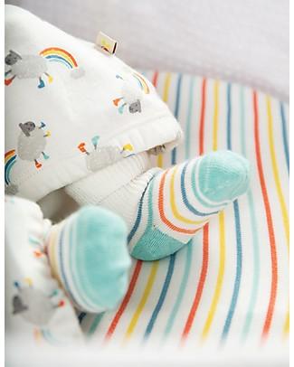 Frugi Comfy Rib Socks 2 Pack, Lamb Multipack - Elasticated Cotton Socks