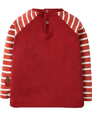 Frugi Happy Long Sleeves Raglan Top, Beaver - 100% organic cotton Long Sleeves Tops