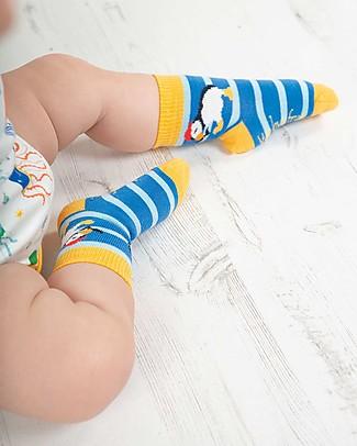 Frugi Little Socks 3 Pack, Puffin Multipack - Elasticated cotton Socks