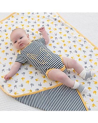 Kite Short Sleeved Bunny Stripy Bodysuit, Navy - 100% organic cotton Short Sleeves Bodies