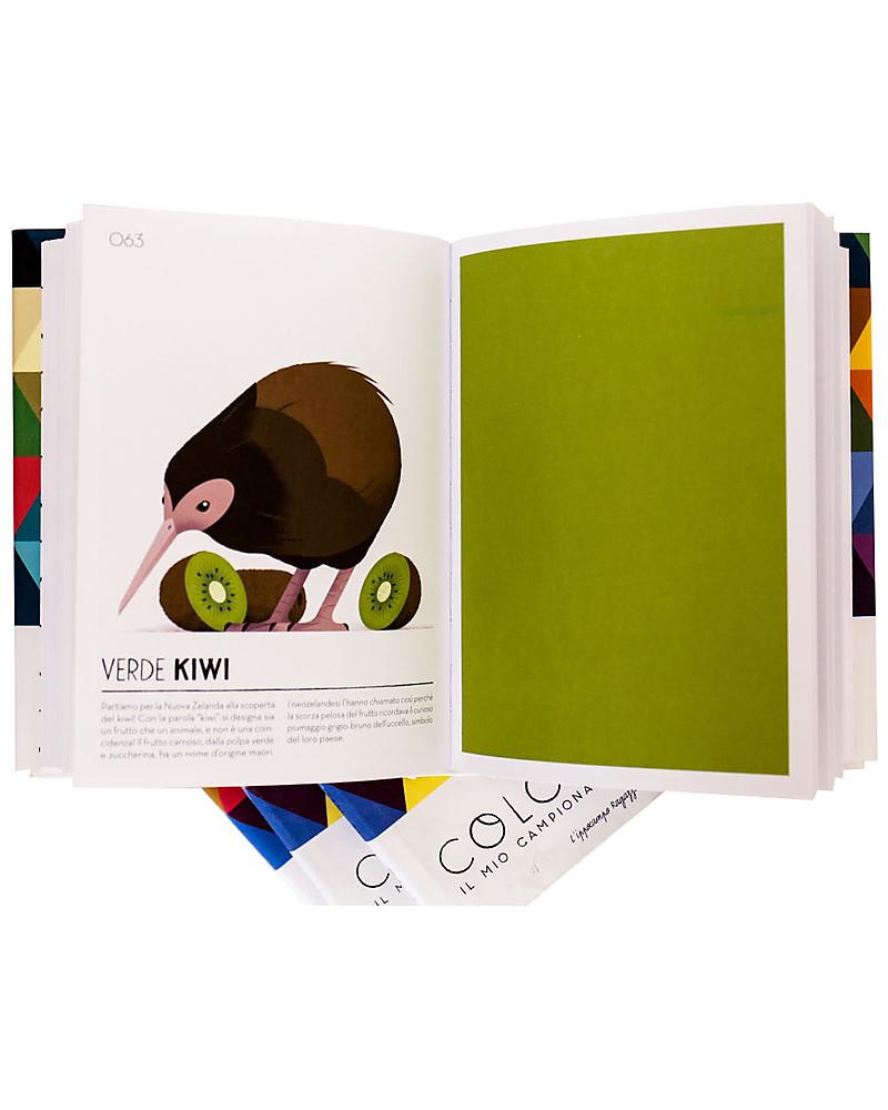 d3a4c82203 L'ippocampo Ragazzi Colorama, Il mio campionario cromatico - Colori e  Disegni Books