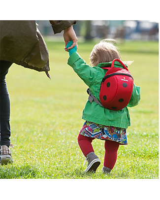 LittleLife Toddler Backpack 1-3 years, Ladybug - Safety Reins Included Small Backpacks