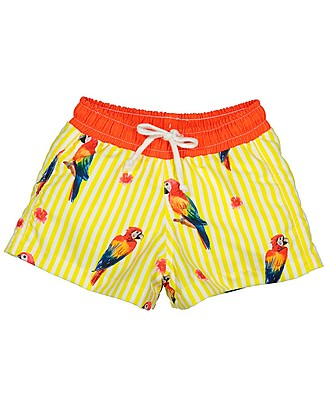 Maria Bianca Boy Swim Shorts, Parrots Swimming Trunks