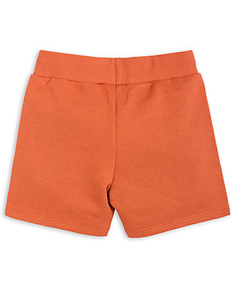 Mini Rodini Donkey/Cactus shorts, Orange - 100% Organic Cotton Shorts