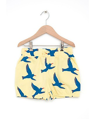Nadadelazos Unisex Shorts, Flying Seagulls - 100% organic cotton poplin Shorts