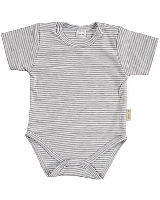 Petit Oh! Basic Body, Short Sleeved - Stripes Grey/White - 100% Pima Cotton Short Sleeves Bodies