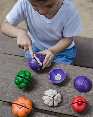 PlanToys Wooden Colorful Veggie Set - Eco-friendly and funny! Story Making Games