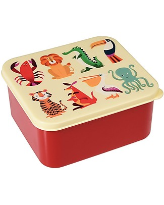 Rex London Colourful Creatures Lunch Box 14x15x7 cm - BPA free! Snack and Formula Containers