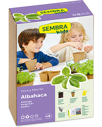 Sembra Hortus Mini Kit Basil - Plant, grow, pick your plant! Science and Nature