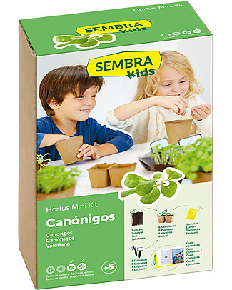 Sembra Hortus Mini Kit Corn Salad - Plant, grow, pick your plant! Science and Nature