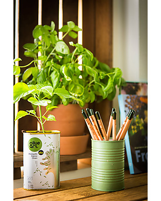 Sprout Plantable Pencil 100% Sustainable - Basil Colouring Activities