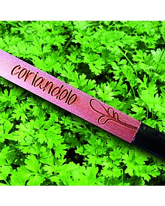 Sprout Plantable Pencil 100% Sustainable - Coriander - Without box Gardening Toys