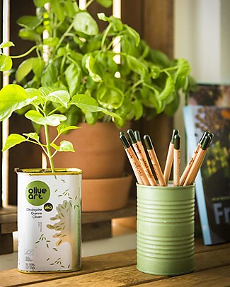 Sprout Plantable Pencil 100% Sustainable - Daisy Colouring Activities