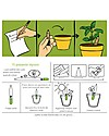 Sprout Plantable Pencil 100% Sustainable - Mint Colouring Activities