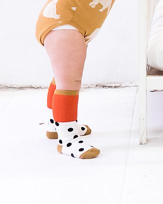 Tiny Cottons Big Dots Medium Socks - 100% Pima Cotton Socks
