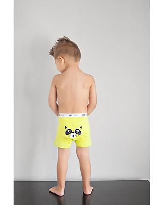 Zoocchini Boy Boxer Set of 3, Crazy Critters – 100% organic cotton Training Pants