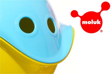 Sale Moluk online