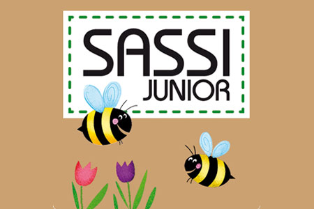 Sale Sassi Junior online